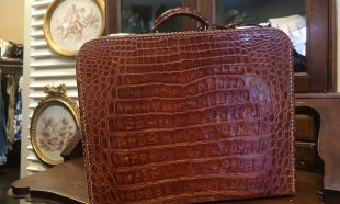 Beauty coccodrillo vintage anni '50